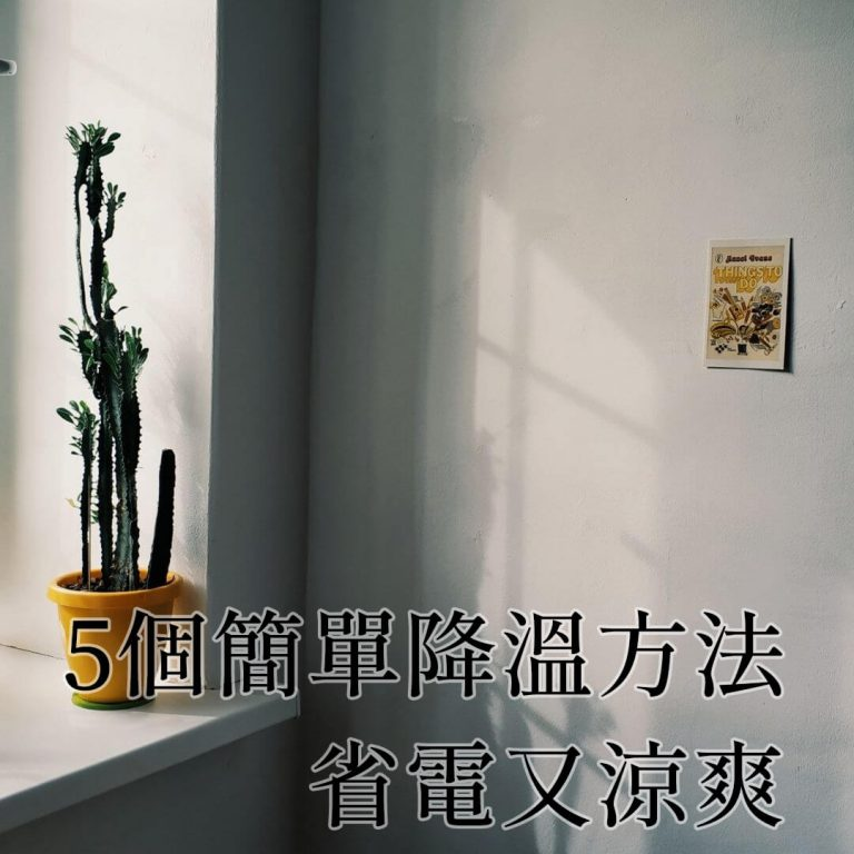 【居家小知識】5個簡單降溫方法!炎炎夏日省電又涼爽